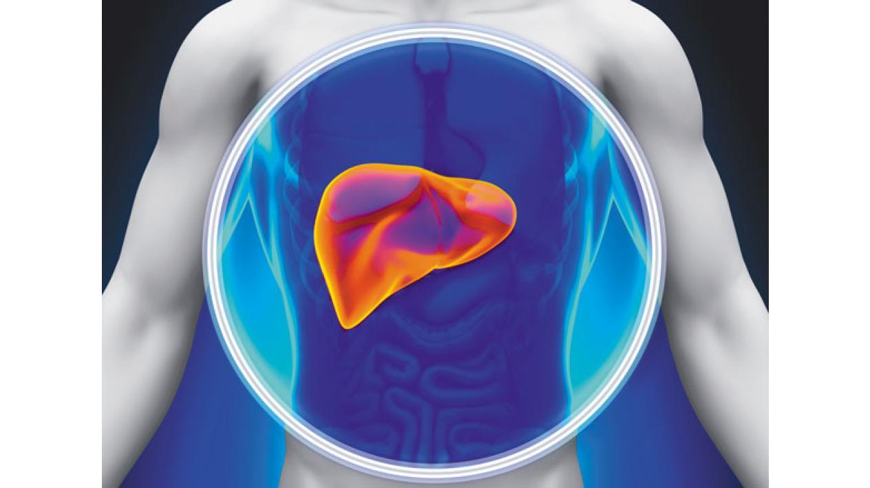 Mărirea durerilor articulare hepatice. Ameliorarea durerii articulare la șold