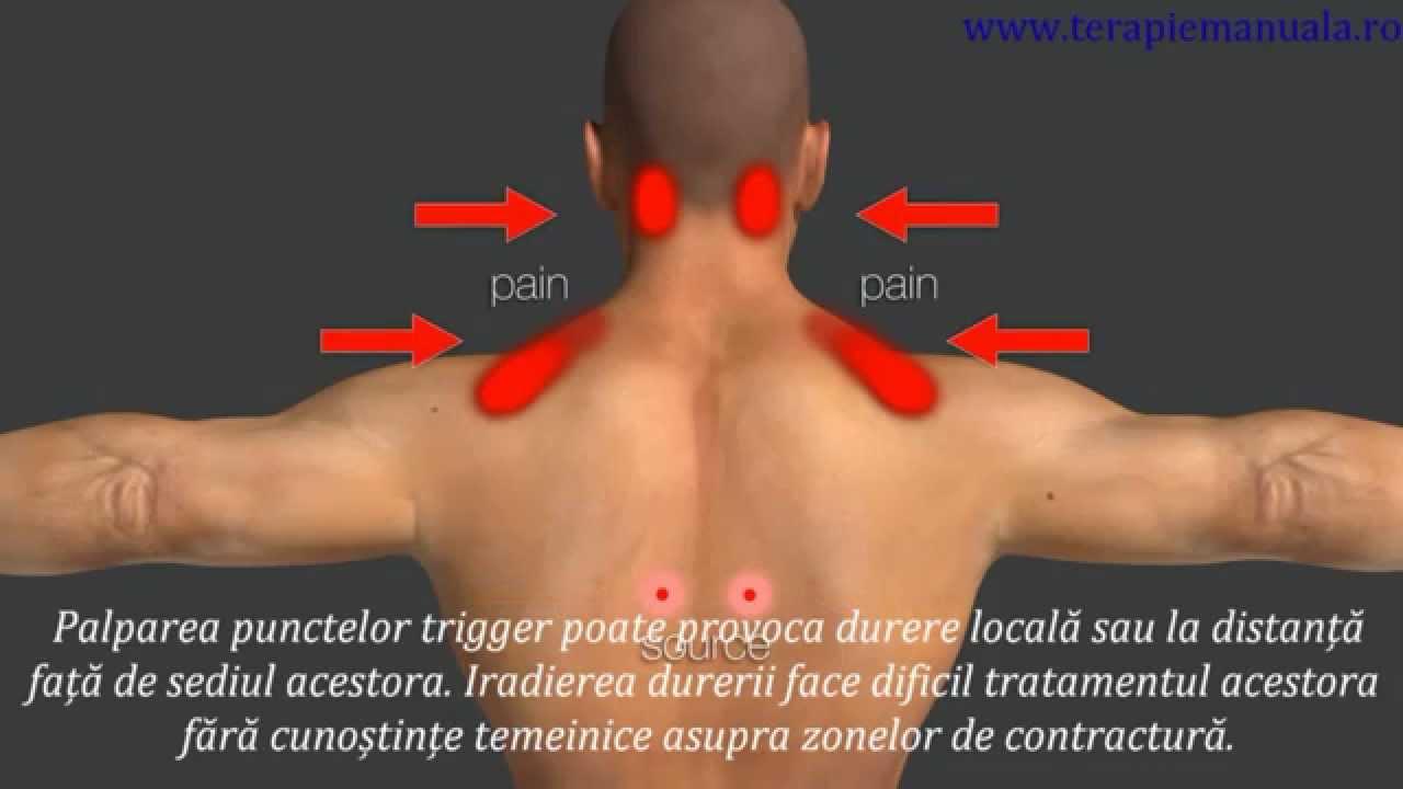 dureri musculare și de braț