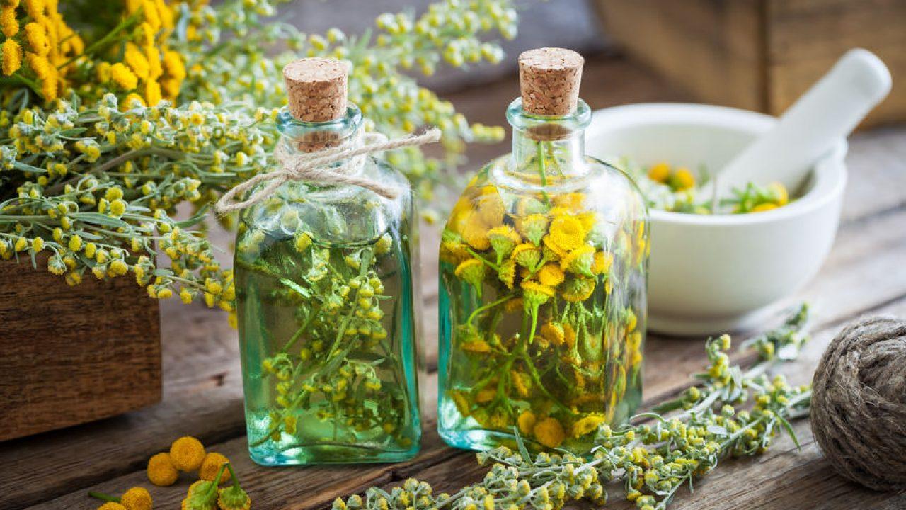 plante medicinale pentru tratamentul artrozei genunchiului)