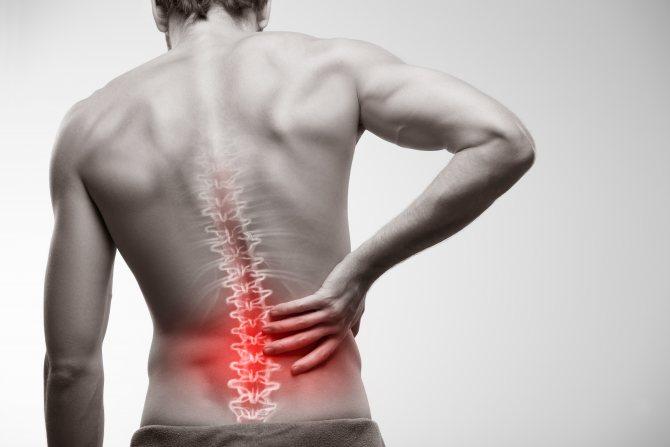medicament pentru spate și articulații)