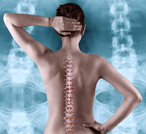 refacerea cartilajului coloanei vertebrale)