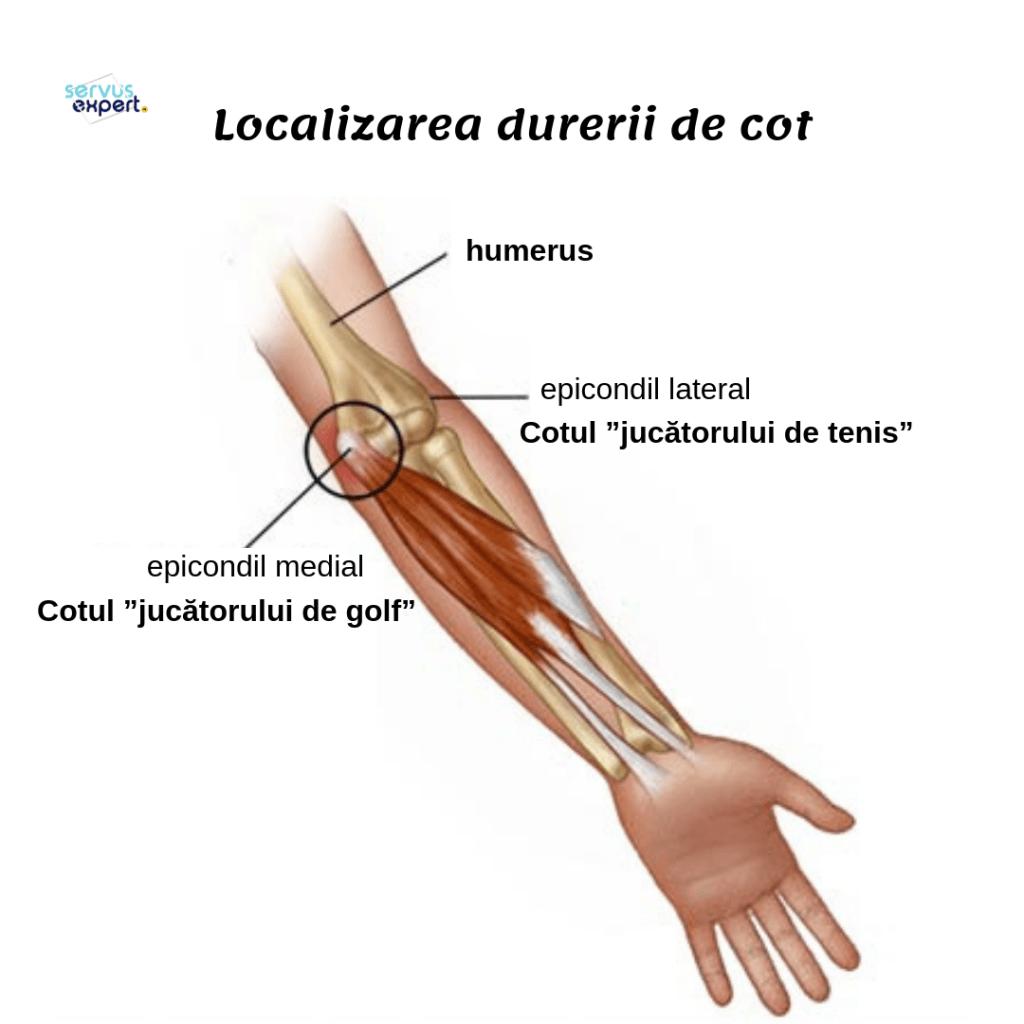 durere internă în articulația cotului drept)