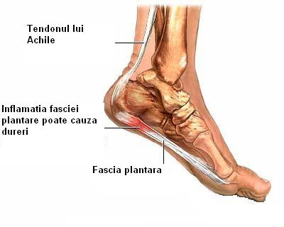 inflamația piciorului și a gleznei)