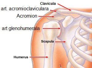 înainte de tratamentul articulației umărului stâng