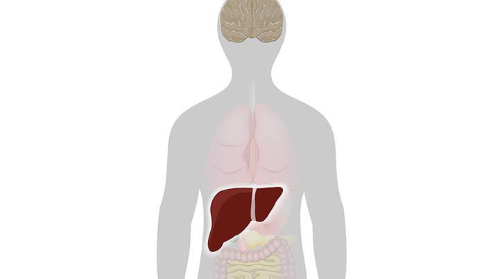 durerile articulare ale bolilor hepatice