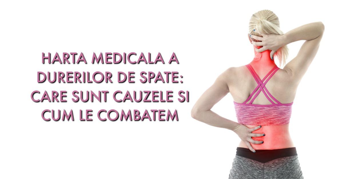 plângeri de durere în mușchi și articulații