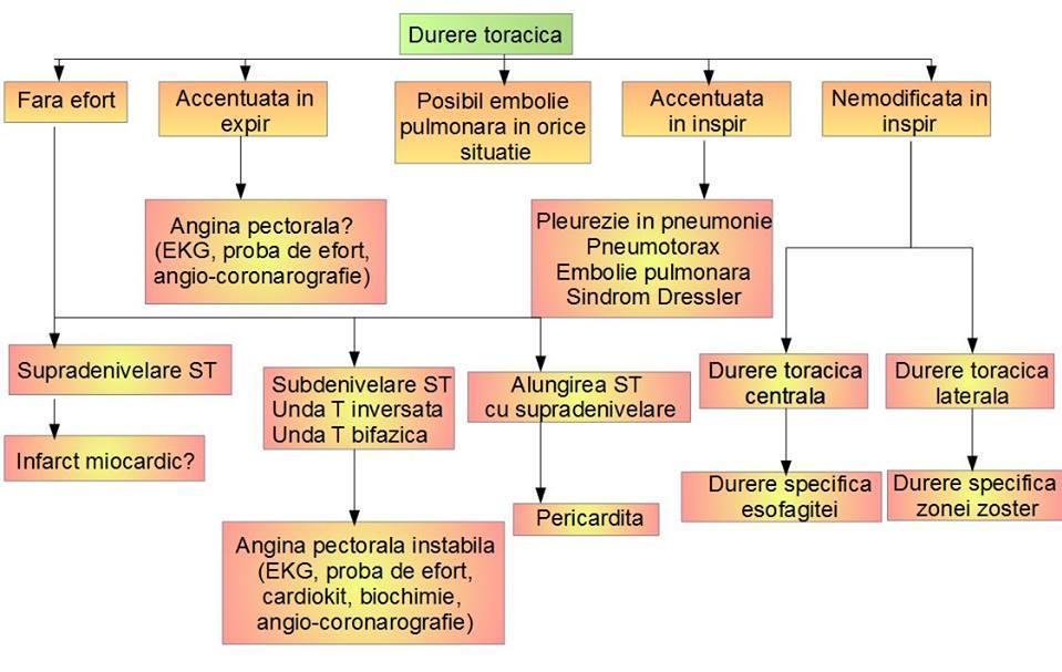 dureri articulare metacarpofangaliene