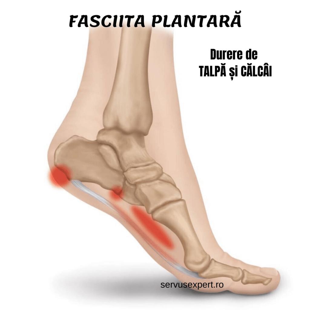dureri de picioare în articulația călcâiului)
