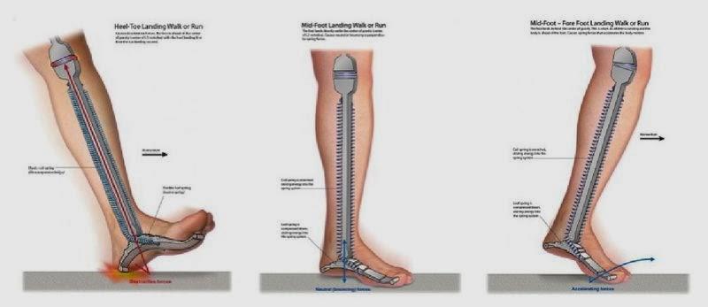 dureri de genunchi după alergare)