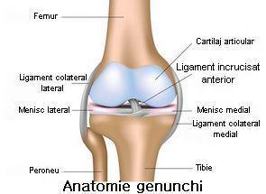 leziuni articulare interne