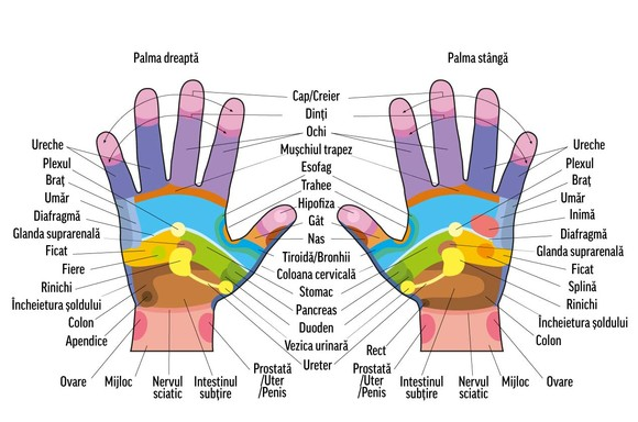 durere în articulațiile mâinilor unui masaj