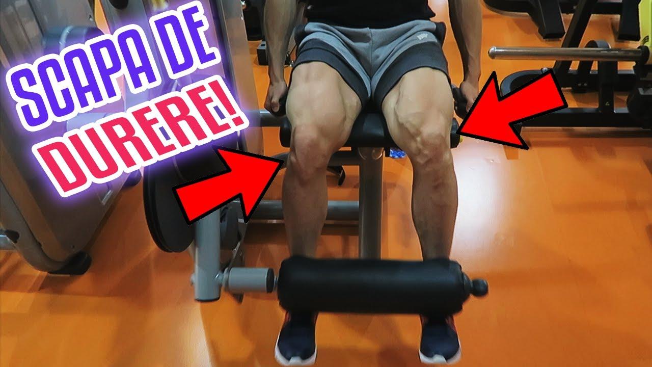 gimnastica pentru dureri de genunchi)