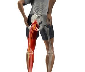 boli ale articulațiilor și mușchilor picioarelor)