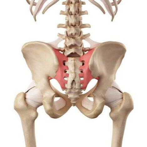 unguente pentru entorse articulare efect de tratament al articulațiilor genunchiului