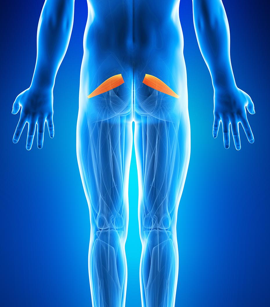 dureri severe la nivelul articulațiilor șoldurilor)