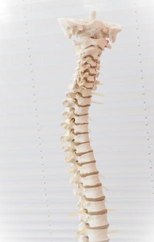 tratamentul coloanei vertebrale și articulațiilor din Zhukovsky
