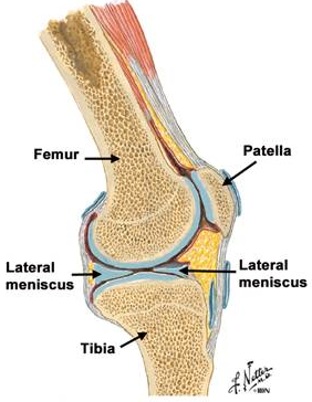 repararea leziunilor la genunchi