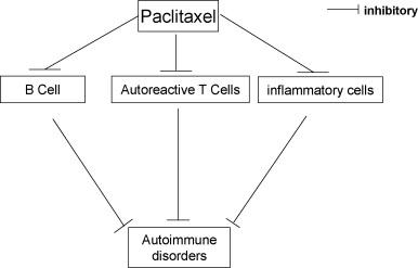 dureri articulare paclitaxel