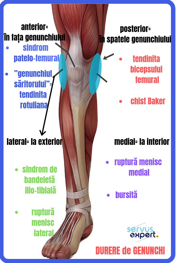 magnetoterapie pentru tratamentul artrozei genunchiului