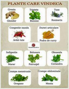 legumă de vindecare articulară)