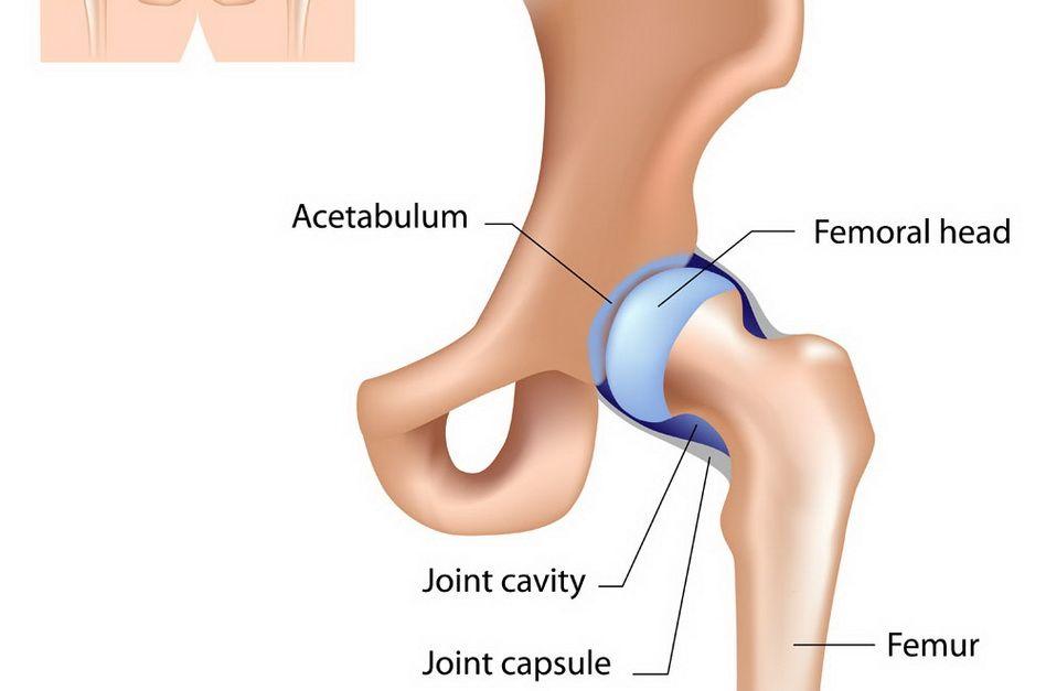 după întindere, articulația șoldului doare