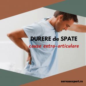 durere articulară bilă artrita si artroza si tratamentul