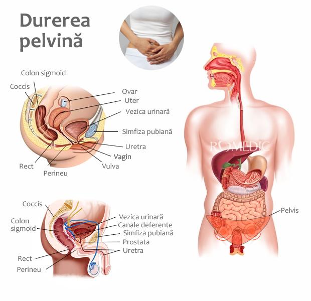 Durere în piept: simptome, cauze, tratament