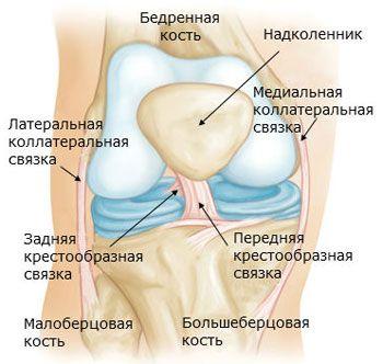 deteriorarea ligamentului cruciat al genunchiului 3 grade)