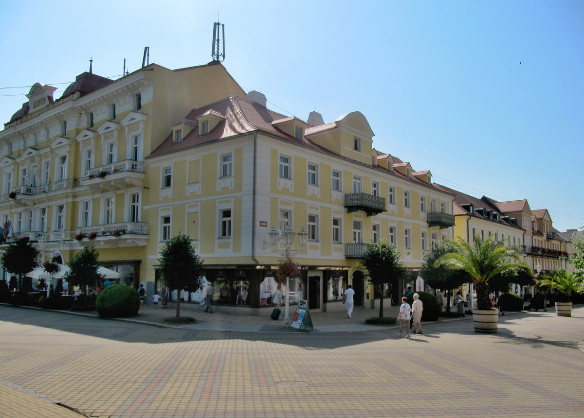 tratamentul artrozei în Karlovy Vary și prețul)