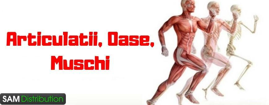 gel pentru articulații și coloana vertebrală și mușchi