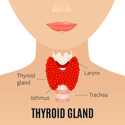 10 semne surprinzătoare ale hipotiroidismului