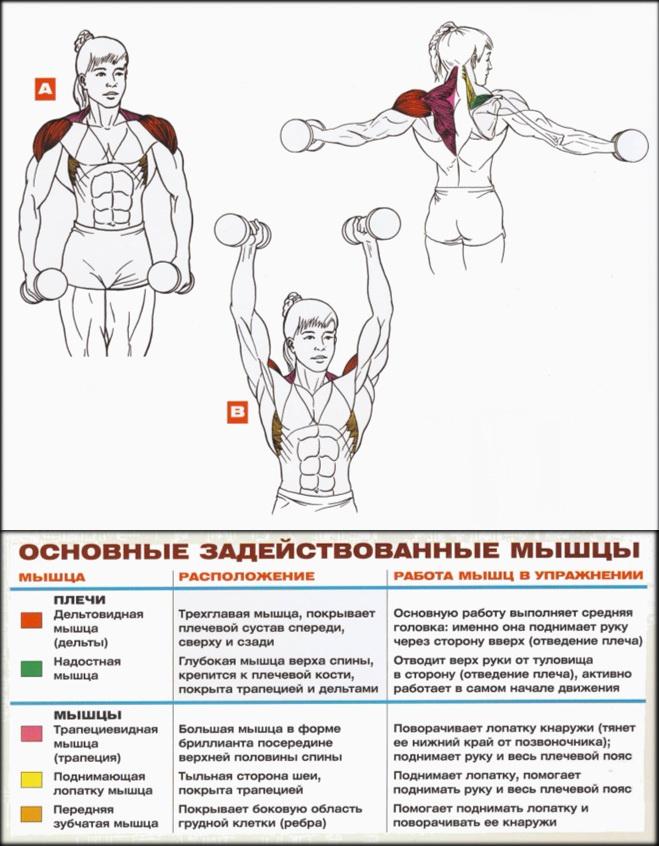 o articulație pe braț doare o umflătură)