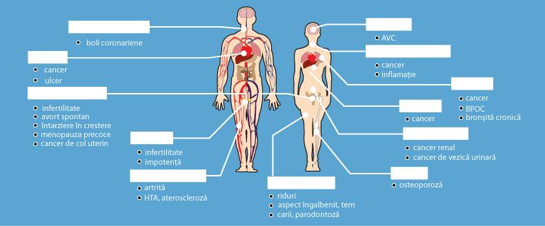 Poliartrita Reumatoida: Simptome • Poze • Analize • Tratament - thecage.ro