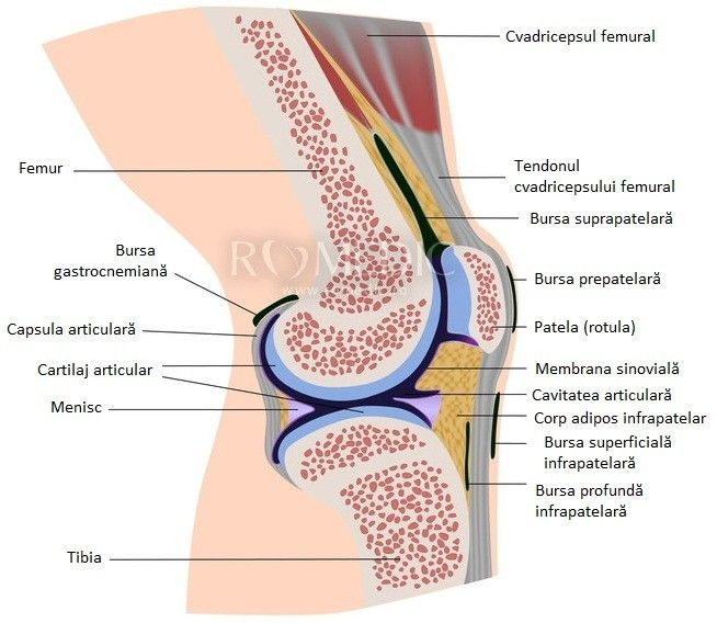 ureaplasmoza ca durere articulară)